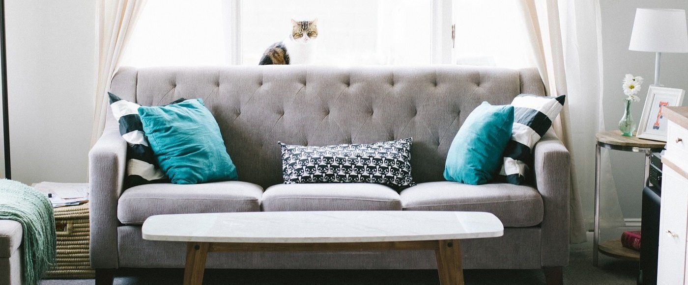 Spot Cleaning Advice - Carpet Cleaning Association of WA
